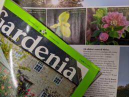 Gardenia ottobre 2020