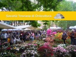 società Toscana di Orticultura 3